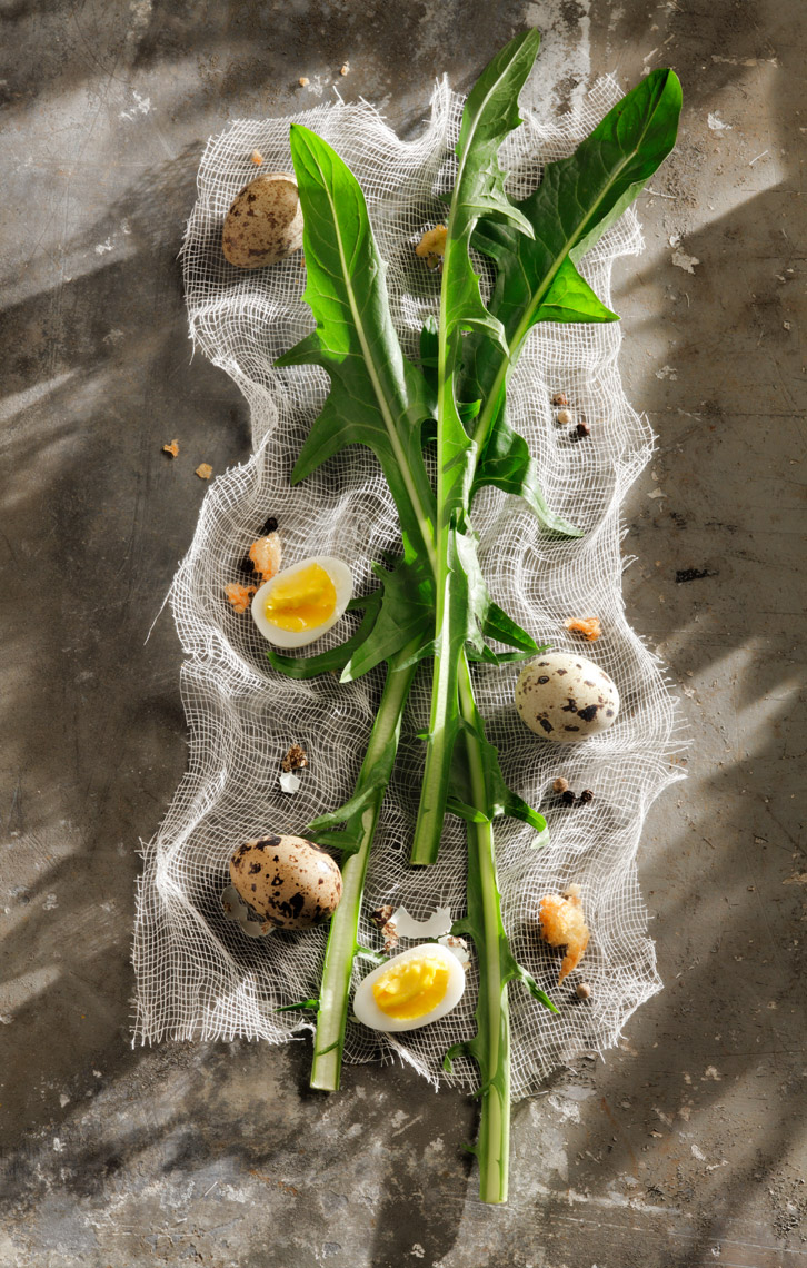 Cheesecloth Dandelion Egg  - Beverage Food  Photography- © Aristo Studios