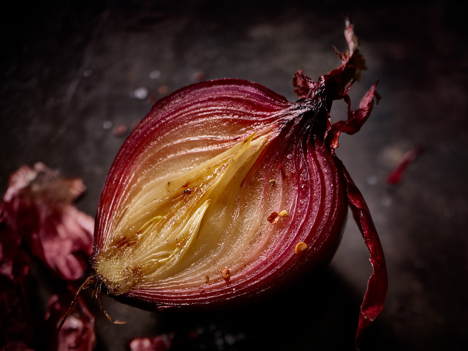 Red-Onion -Food Photography- © Aristo Studios