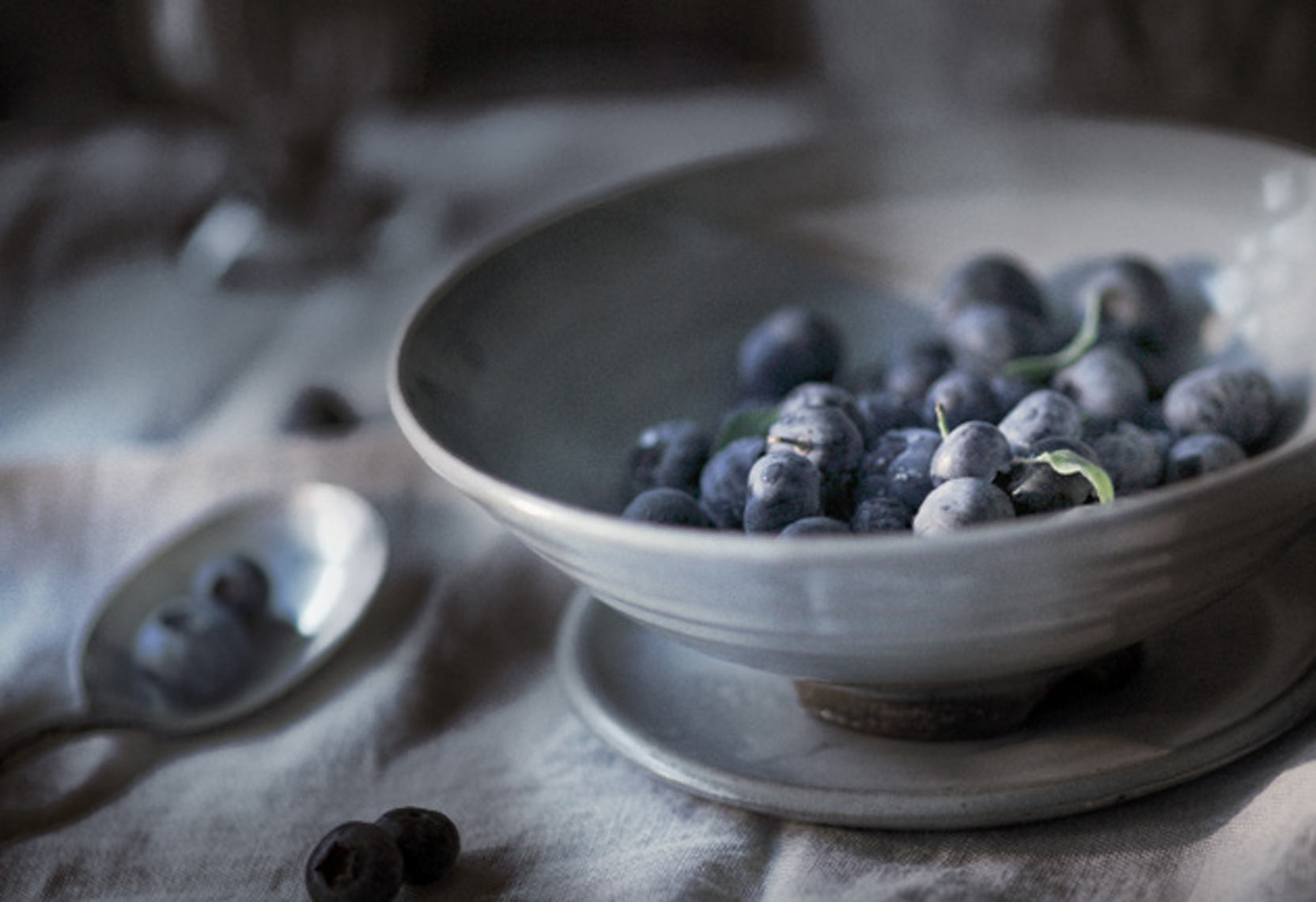 Blueberries in Bowl Food Beverage Photography- © Aristo Studios