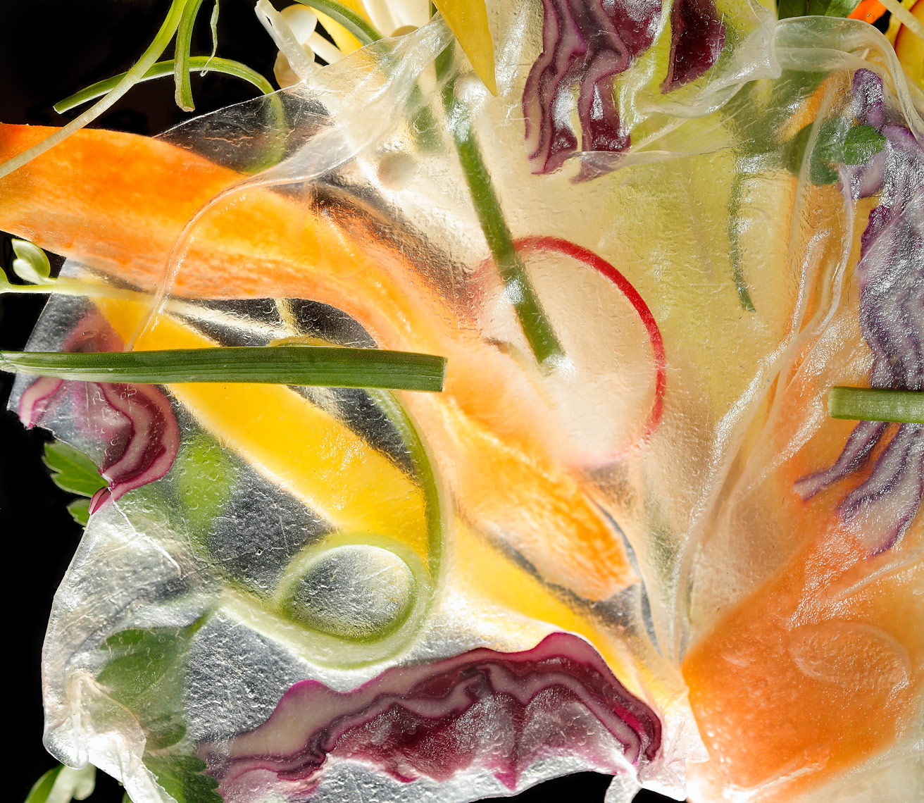 veggie rice paper Food Photography- © Aristo Studios